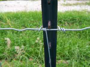 T-post fence clip.