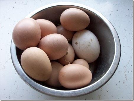 ChickenAndDuckEggs