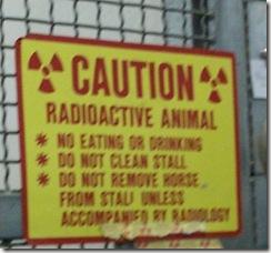 RadioactiveHorse