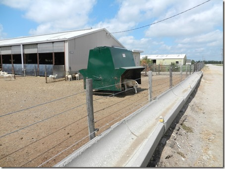 Concrete half-pipe feeders, access is opened up by removing the hotwire strand at the bottom, they can be filled from the road side